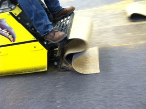 Twister Carpet Remover